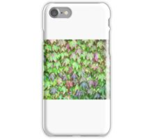 Green Green Holly of Ireland iPhone Case/Skin