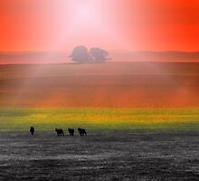 Paradise Pasture 2 by Neophytos