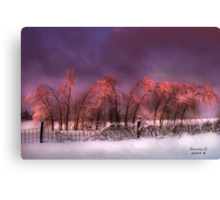 """ Iced Pink "" Canvas Print"