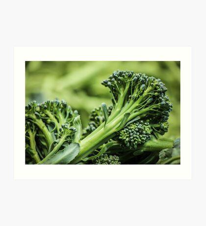Portland Farmers Market Broccoli Art Print