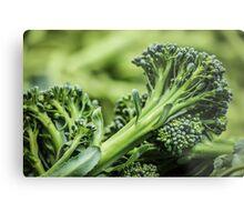 Portland Farmers Market Broccoli Metal Print