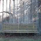 Rustic Bench by Paul Coussa