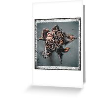 Scatch 1 Greeting Card