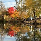 Autumn In Chico by James Eddy