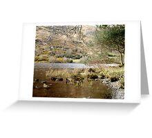 Gugan Barra - Ireland Greeting Card