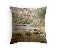 Gugan Barra - Ireland Throw Pillow