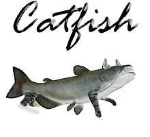 Literal Catfish by Fangs