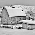 Grandma's Barn by Randy Richards