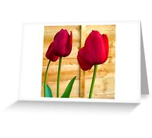 Red Tulips ..  Greeting Card