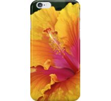 Flower of the Sun iPhone Case/Skin