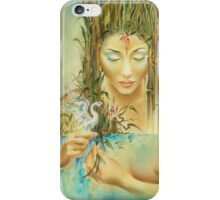 Chinese Fairytale (Weaving the Threads of Life...) iPhone Case/Skin