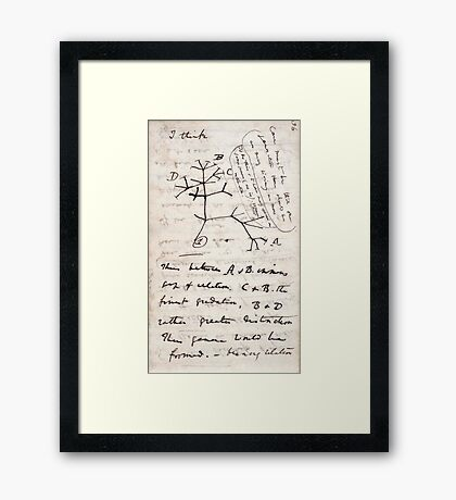 I Think - Charles Darwin 1 Framed Print
