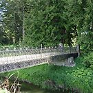 old ornate iron bridge by flower7027