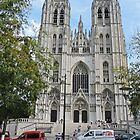 Cathedral of St Michael and St Gudule, Brussels, Belgium by Margaret  Hyde