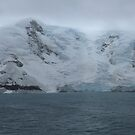 King George Island, Antarctica by John Douglas