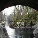 water under a bridge 1 by flower7027