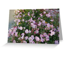 Purple bundle Greeting Card