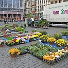 Preparing for the street market, Brussels, Belgium by Margaret  Hyde