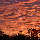 Sunset from the Porch by MichelleR