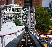 Ride the Coney Island Cyclone by Stuart Green