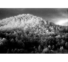 Big hill little trees............daniland  Photographic Print