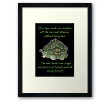The Legend of Korra Lion Turle With Quote Framed Print