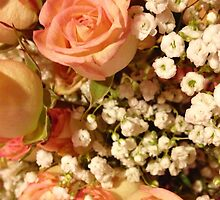 Antique Coral Floral by madisoncenter