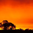 Shepherd's Warning? by bushdrover