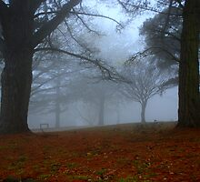 Fog Bound by KeepsakesPhotography Michael Rowley