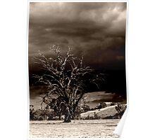 Dark & Stormy Night Poster