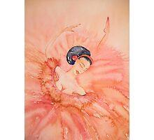 Attitude - Sur La Demi Pointe 'Le Belle Ballerine' © Patricia Vannucci 2008 Photographic Print