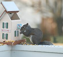 Eating me out of house and home by Jim Caldwell