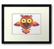 The Outstanding Owl Framed Print