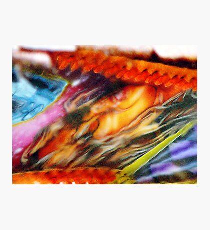 Colours of Bridlington (i) Photographic Print