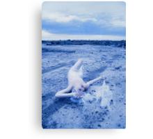 tungsten gladwrap bride Canvas Print
