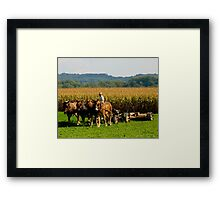 Amish Country © Framed Print