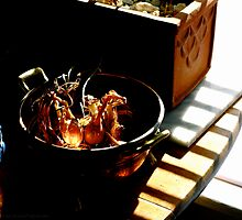 Onions In A Brass Bowl by Alvin-San Whaley