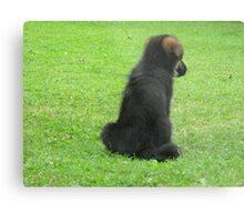 GERMAN SHEPERD PUPPY Metal Print
