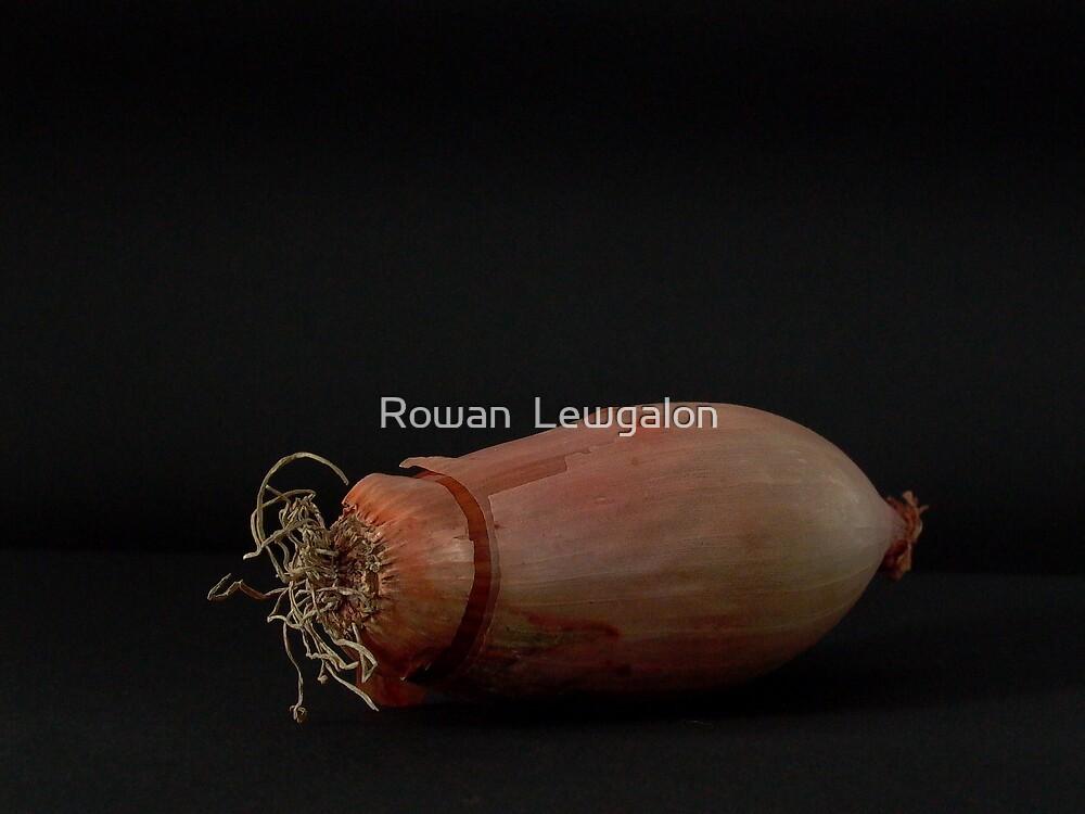 Scallion by Rowan  Lewgalon