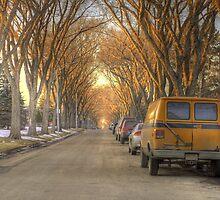 Spring Street (HDR) by Evan Adnams