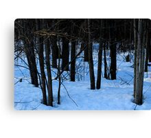 The approaching Darkness Canvas Print