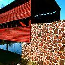 Sachs Bridge by Sharon Ulrich