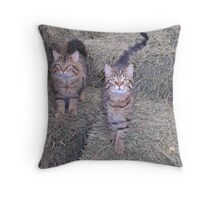 We're Proud Barn Cats Throw Pillow