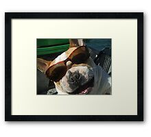 just the cutest frenchie in the whole wide world Framed Print
