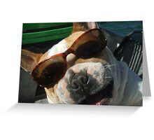 just the cutest frenchie in the whole wide world Greeting Card