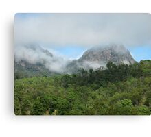 mountain mist Canvas Print