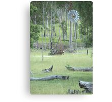 After the Gold Rush Canvas Print