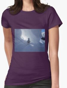 Dave Stormtrooper  Ice Cave Womens Fitted T-Shirt