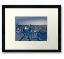 Shore Leave? Framed Print