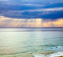 Sun of Portsea by Rosina  Lamberti